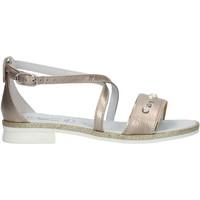 kengät Tytöt Sandaalit ja avokkaat Nero Giardini P830480F Nut
