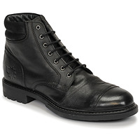 kengät Miehet Bootsit Base London REPTON Musta