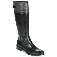 kengät Naiset Saappaat Dorking TIERRA Musta / Harmaa