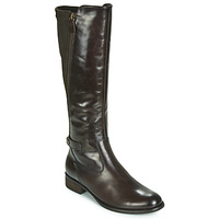 kengät Naiset Saappaat Gabor 3164228 Brown