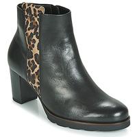 kengät Naiset Nilkkurit Gabor 3554122 Black / Leopardi