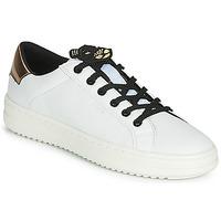 kengät Naiset Matalavartiset tennarit Geox D PONTOISE White / Cuivré