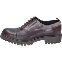 kengät Miehet Derby-kengät & Herrainkengät Ossiani classiche pelle camoscio Marrone