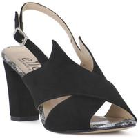 kengät Naiset Sandaalit ja avokkaat Ellen CAMOSCIO NERO Nero