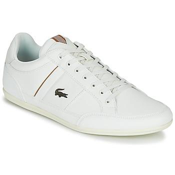 kengät Miehet Matalavartiset tennarit Lacoste CHAYMON 319 1 White