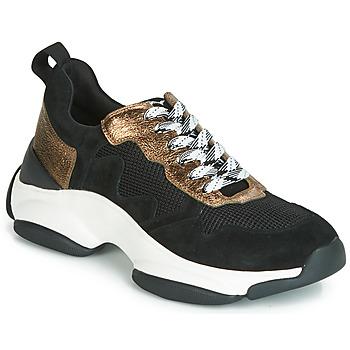 kengät Naiset Matalavartiset tennarit Mam'Zelle HELIUM Black / Bronze