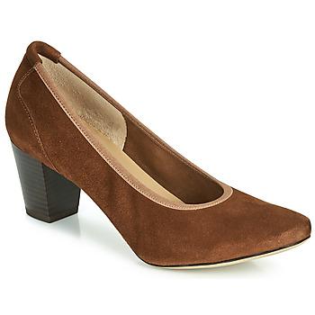 kengät Naiset Korkokengät Perlato 10362-CAM-COGNAC Cognac
