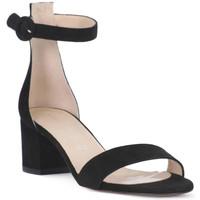 kengät Naiset Sandaalit ja avokkaat Priv Lab CAMOSCIO NERO Nero