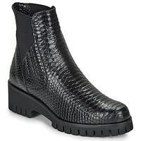 kengät Naiset Bootsit Sweet Lemon DAYLIN Black
