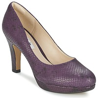 kengät Naiset Korkokengät Clarks CRISP KENDRA Violetti