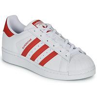 kengät Lapset Matalavartiset tennarit adidas Originals SUPERSTAR J Valkoinen / Punainen
