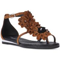 kengät Naiset Sandaalit ja avokkaat Fluchos SONO ITALIANA CROSTA CUIO Nero