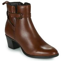 kengät Naiset Nilkkurit Betty London LAVANDA Cognac