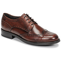 kengät Miehet Derby-kengät Carlington LOUVIAN Ruskea
