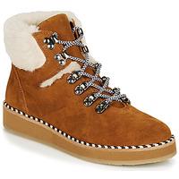 kengät Naiset Bootsit Ippon Vintage RIDE LAND Camel