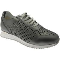 kengät Naiset Matalavartiset tennarit Calzaturificio Loren LOC3845gr grigio