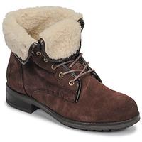 kengät Naiset Bootsit Casual Attitude LEILA Brown