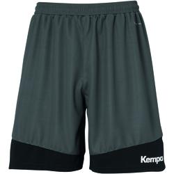 vaatteet Miehet Shortsit / Bermuda-shortsit Kempa Shorts  Emotion 2.0 noir/gris