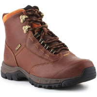 kengät Naiset Bootsit Ariat Berwick lace GTX Insulated 10016298 brown