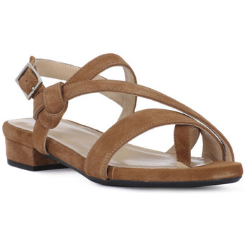 kengät Naiset Sandaalit ja avokkaat Frau CAMOSCIO SELLA Marrone