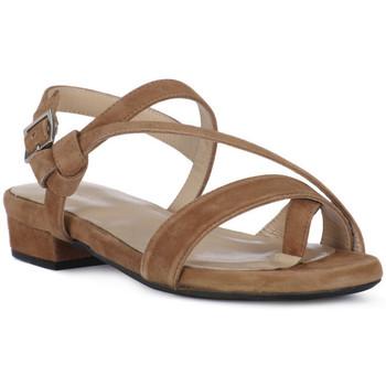 kengät Naiset Sandaalit ja avokkaat Frau CAMOSCIO NERO Nero