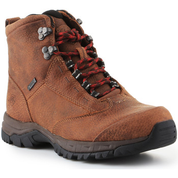 kengät Naiset Vaelluskengät Ariat Trekking shoes  Berwick Lace Gtx Insulated 10016229 brown
