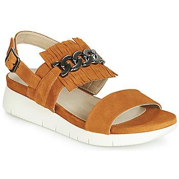 kengät Naiset Sandaalit ja avokkaat Dorking 7863 Brown