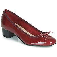kengät Naiset Balleriinat André POEME Red