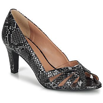 kengät Naiset Sandaalit ja avokkaat André VANILLE Grey