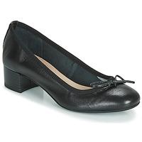 kengät Naiset Balleriinat André POEME Black