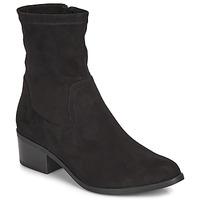 kengät Naiset Bootsit André NITOUCHE Black