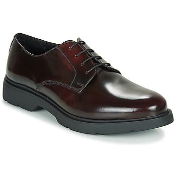 kengät Miehet Derby-kengät André CHAD Bordeaux