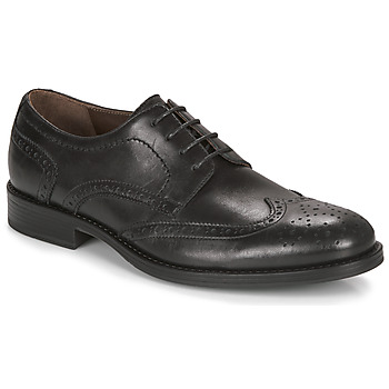 kengät Miehet Derby-kengät André NORY Black