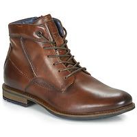 kengät Miehet Bootsit André CHIROS Ruskea