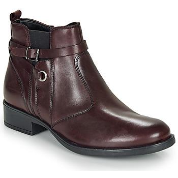 kengät Tytöt Bootsit André MATHI Bordeaux
