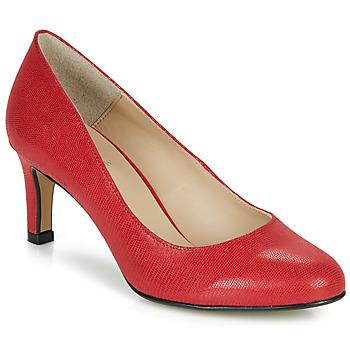kengät Naiset Korkokengät André POMARA 2 Red