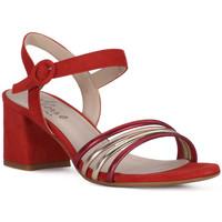 kengät Naiset Sandaalit ja avokkaat Priv Lab SANDALO 1577 Rosso