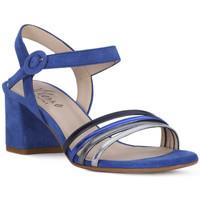 kengät Naiset Sandaalit ja avokkaat Priv Lab SANDALO 969 Blu