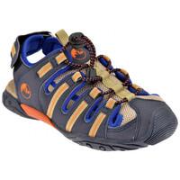 kengät Lapset Sandaalit ja avokkaat Lumberjack  Sininen
