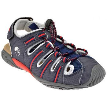 kengät Lapset Sandaalit ja avokkaat Lumberjack  Harmaa