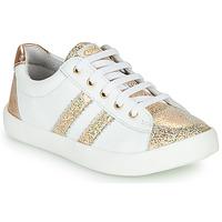 kengät Tytöt Matalavartiset tennarit GBB MAPLUE White / Kulta