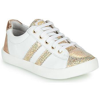 kengät Tytöt Matalavartiset tennarit GBB MAPLUE Valkoinen / Kulta