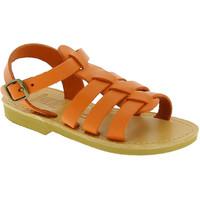 kengät Lapset Sandaalit ja avokkaat Attica Sandals PERSEPHONE CALF ORANGE arancio