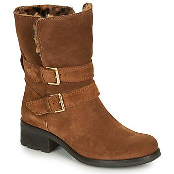 kengät Naiset Bootsit André MAJOLIE Camel