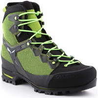 kengät Miehet Vaelluskengät Salewa Trekking shoes  Ms Raven 3 GTX 361343-0456 green