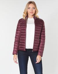 vaatteet Naiset Toppatakki JOTT CHA Aubergine