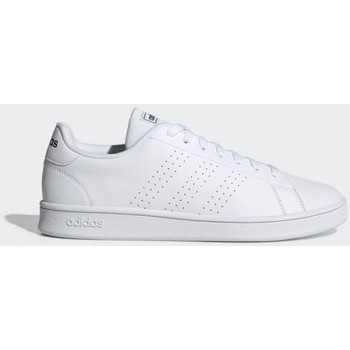kengät Miehet Matalavartiset tennarit adidas Originals ADVANTAGE BASE EE7691 White