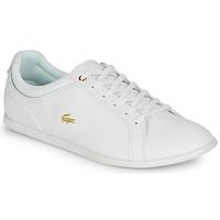 kengät Naiset Matalavartiset tennarit Lacoste REY LACE 120 1 CFA Valkoinen / Kulta
