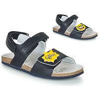 kengät Pojat Sandaalit ja avokkaat Chicco HAZEL Sininen / Keltainen