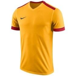 vaatteet Miehet Lyhythihainen t-paita Nike Dry Park Derby II Jersey Oranssin väriset, Keltaiset